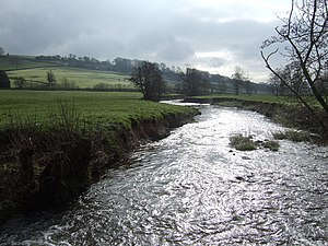 River Yarty - The River Yarty running in the valley between Dalwood and Membury