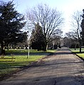 Road within Colchester Cemetery - geograph.org.uk - 1735928.jpg