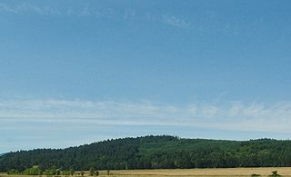 Roscoes Airport airport in Willamina, United States of America