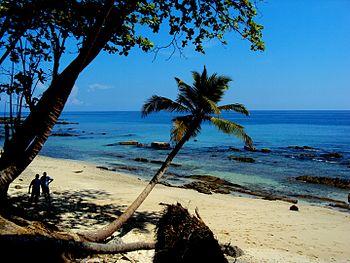 Rose Island beach view.jpg