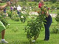 Roseto-di-roma-capitale---sito-di--il-cimitero-ebraico--dal-1645-fino-al-1934 9005796993 o 03.jpg