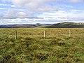 Rough grazing on Watch Hill - geograph.org.uk - 548143.jpg