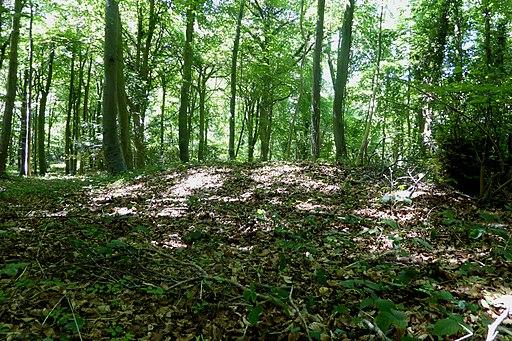 Round barrow on Standish Wood