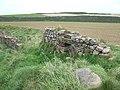 Ruined wall beside the coast path, Dale - geograph.org.uk - 1524935.jpg