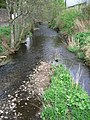 Ruthven Water,Milton - geograph.org.uk - 411213.jpg