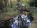 Saint-Avé - ruisseau de Lihuanten (04).jpg