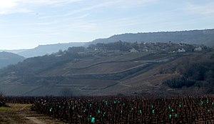Saint-Romain wine - Saint-Romain vineyards in wintertime.