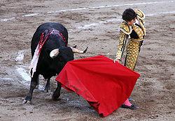Spanien Torero