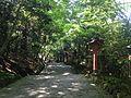 Sando for Upper Shrine of Usa Shrine 2.JPG