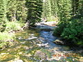 Sawtooth Wilderness Stream 4.JPG