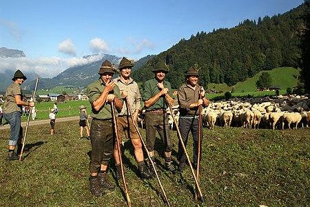 """Der Ausdruck Hirte (auch Hirt) oder Hüter bezeichnet eine Person, die eine Herde von Nutztieren hütet (bewacht) und versorgt (z. B. Schafe, Ziegen, früher auch Kühe, Gänse, Schweine, Rinder, usw.). Im Lateinischen heißt Hirte """"Pastor""""."""