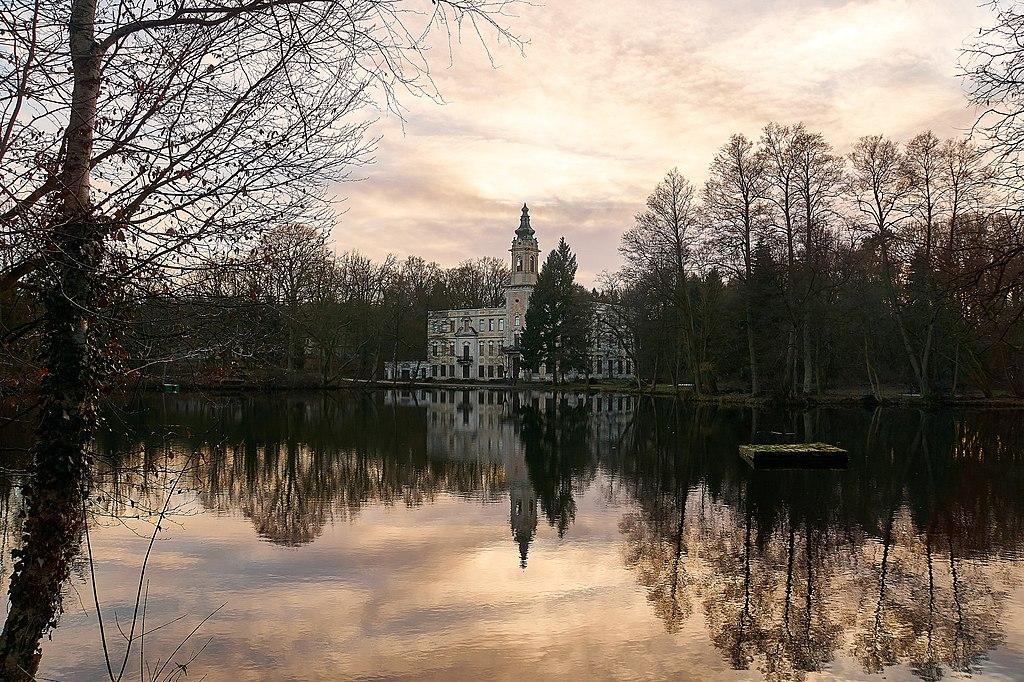 Schloss Dammsmühle (240964963).jpeg