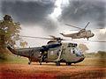 Sea King Helicopters During Excersise Western Rhumba 16-09-2004 MOD 45143592.jpg