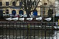 Seagulls in Berlin, January, 2017.jpg