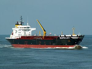 Seamullet p1 approaching Port of Rotterdam, Holland 12-Mar-2006.jpg