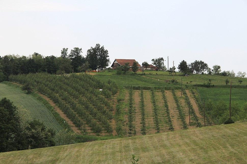 Selo Kotešica - opština Valjevo - zapadna Srbija - Panorama 11