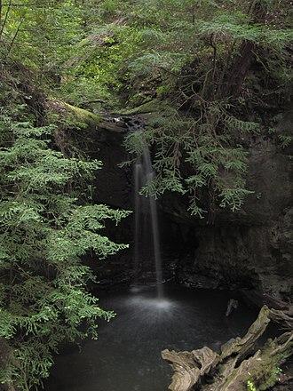 Big Basin Redwoods State Park - Sempervirens Falls
