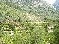 Serra de Tramuntana Mallorca 2008 14.JPG