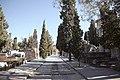 Servicios Funerarios de Madrid amplía su programa cultural con visitas nocturnas teatralizadas al Cementerio Civil 03.jpg