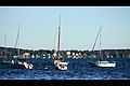 Setting Sail (8133113547).jpg