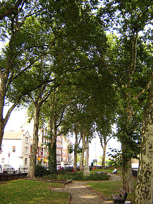Shacklewell - Shacklewell Green, September 2005. An old village green encircled by modern London.