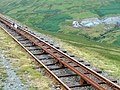 Sheep on the Snaefell mountain railway track - geograph.org.uk - 155350.jpg