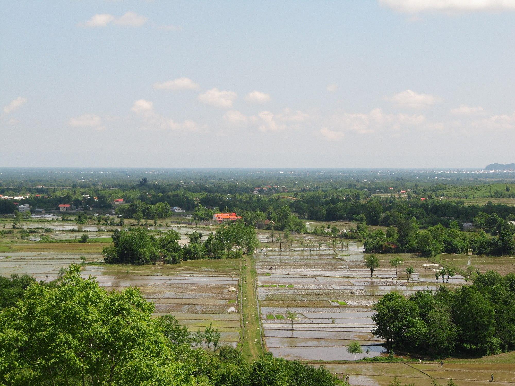 شهرستان سیاهکل
