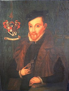Michael Stanhope (died 1552) English knight