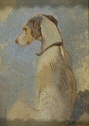 Edwin Henry Landseer: Study of a Greyhound