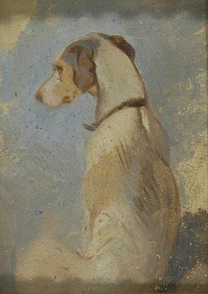 File:Sir Edwin Henry Landseer - Study of a Greyhound - Google Art Project.jpg