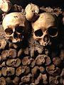 SkullsParis 01.jpg