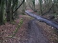 Slope connecting the bridleway Downs Link path to the bridleway to Slinfold - geograph.org.uk - 1713466.jpg