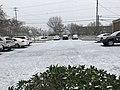 Snow in Valdosta, Jan 2018 a.jpg