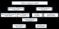 Social Graph Models.png