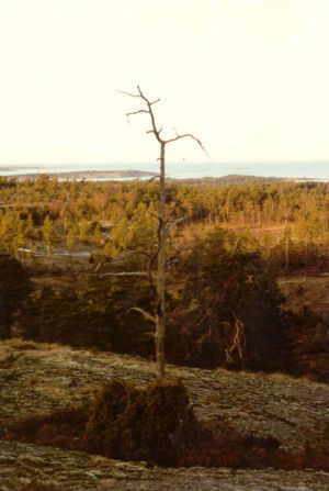 Geta, Åland - Geta in 1990