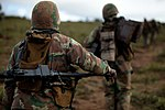 South African National Defence Force soldiers on their way.jpg