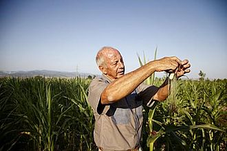 White South African - Afrikaner farmer in Georgia, Caucasus region, 2011