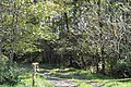 South Branch River Road entrance to Sycamore Dale.jpg