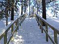 South Karelia, Finland - panoramio (8).jpg