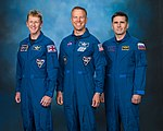 Soyuz TMA-19M official crew portrait.jpg