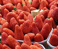 Spanish-strawberries.jpg