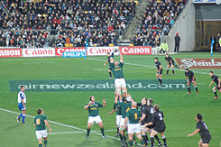 Springbok-All Black lineout in tri nations 2006.jpg