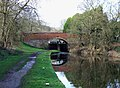 Staffordshire and Worcestershire Canal at Gothersley Bridge - geograph.org.uk - 659640.jpg