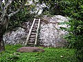 Stairway to a hermit's place in the jungle - panoramio.jpg