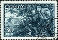 Stamp of USSR 0836g.jpg