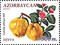 Stamps of Azerbaijan, 2000-571.jpg