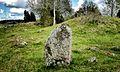 Standing stone Rasbo 38-1 Uppland Sweden.jpg