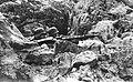 Stanowisko niemieckiego ciężkiego karabinu maszynowego w górach na froncie włoskim (2-2282).jpg