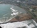 Starr-091112-1102-Cordia subcordata-aerial view with surf-Kahului Harbor-Maui (24896153191).jpg