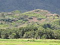 Starr-130322-3828-Syzygium cumini-habitat view surrounding hills-Hanalei NWR-Kauai (25183418256).jpg